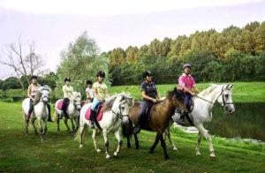 sejour equestre maine et loire   destinations cheval
