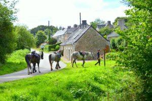 Week-end équitation les Montagnes Noires en Bretagne