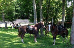 randonnee chateaux loire | destinations cheval