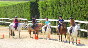 stage equitation | destinations cheval