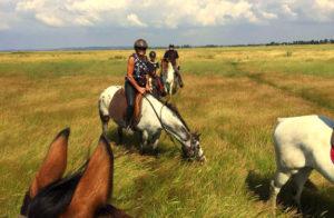randonnee cheval normandie destinations cheval