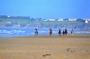 randonnee cheval normandie destinations cheval