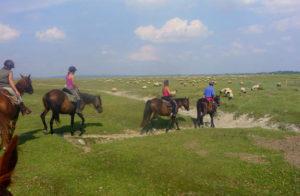 balade cheval mont saint michel   Destinations Cheval