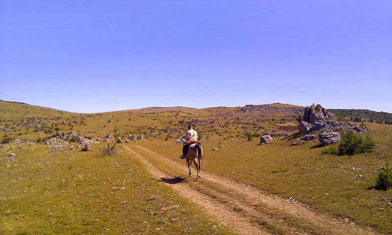 randonnée équestre Cévennes | Destinations Cheval