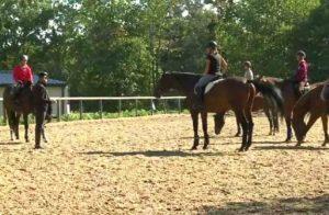 stage équitation en PACA   Destinations Cheval