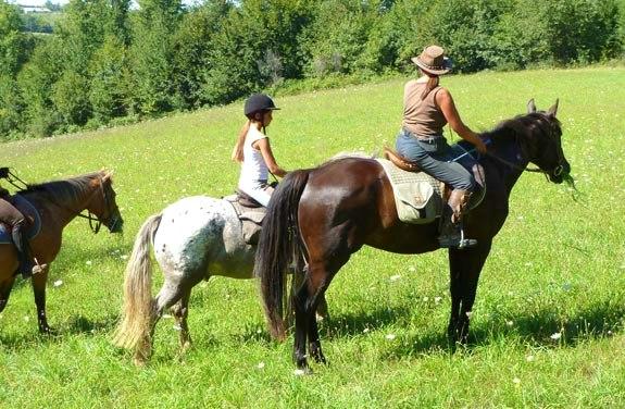stage d'initiation à cheval dans le gers