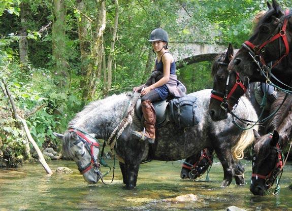 colonie de vacances à cheval