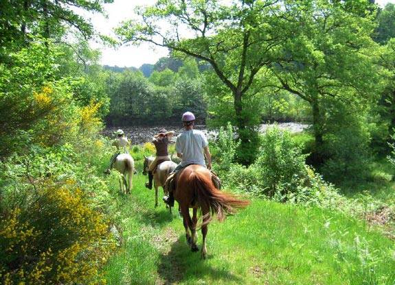 promenade à cheval avec destinations Cheval