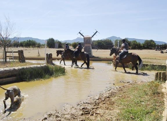 stage d'équitation pour adulte