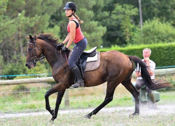stage d'équitation avec Destinations Cheval