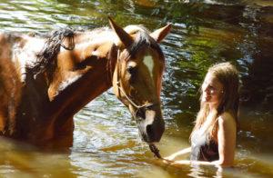 randonnée cheval périgord