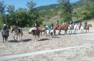stage d'équitation en Aveyron