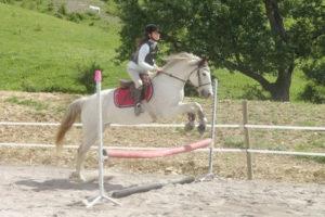 Stage d'équitation en Aveyron 7-17 ans